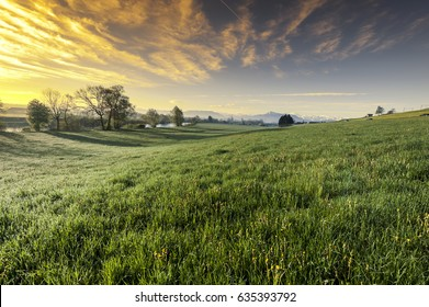 Pasture on the background of snow-capped Alps in Switzerland at sunset. Swiss landscape with meadows along the irrigation canal