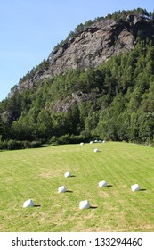 Pasture with silage hay bales wrapped in white plastic. Hordaland region, Norway.