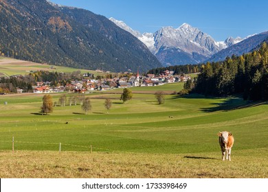 Pastures in the green Val Pusteria