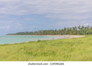 Patacho Beach in Alagoas Brazil