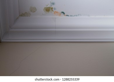 Patches of mold growing on the ceiling in an apartment, different shades.