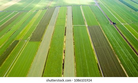 Patchwork of fields in Snelrewaard, Netherlands