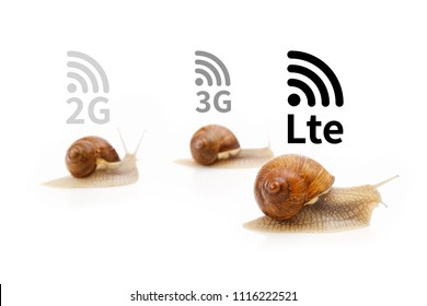 Path to 5G cellular networks, mobile network technology concept. Internet High speed mobile broadband. Wireless cellular Signaling data. Snail competition, comparison isolated white
