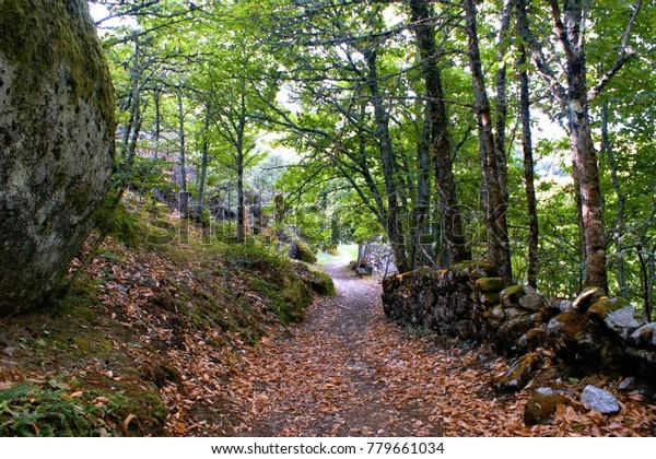 Path to Aguiar castle in Vila Pouca de Aguiar, Portugal