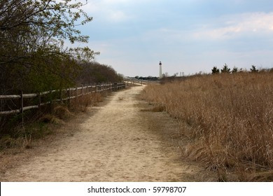 Path along bird sanctuary in Cape May with lighthouse view