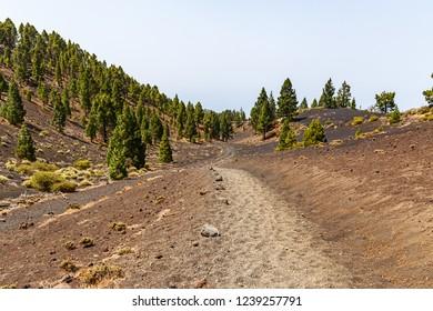 Path along Ruta de los Volcanes, beautiful hiking path over the volcanoes, La Palma, Canary Islands