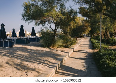 path among deck chairs on a beach and green trees