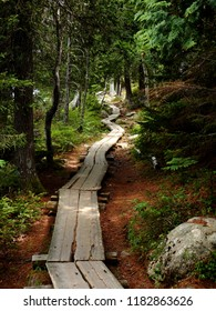 Path around Jordan Pond in Acadia National Park