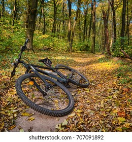 The path in the autumn forest and the bike hardtail. Bicycle lying on the ground in the forest
