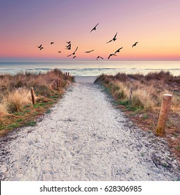 path at Baltic sea over sand dunes with ocean view, sunset summer evening