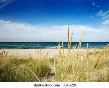path to beach with dune grass