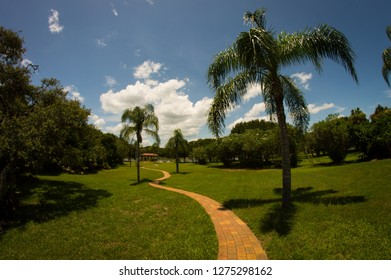 The path to the beach, Florida