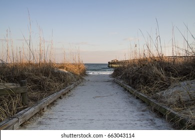 Path To The Beach. Sandy boardwalk path to Atlantic Ocean with a wooden ocean pier on the horizon. Myrtle Beach State Park, South Carolina.