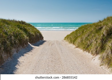 Path to the beach in summer