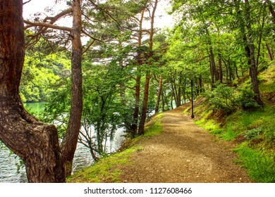 Path in the beautiful forest. this region name is Borabay. It is a town in Amasya Province, Turkey.