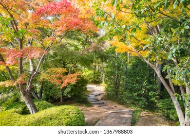A Path in between colorful maple trees in autumn at Koko-en Garden in Himeji, an Edo Style Japanese Garden located next to the famous Himeji Castle in Hyogo Prefecture, Japan.