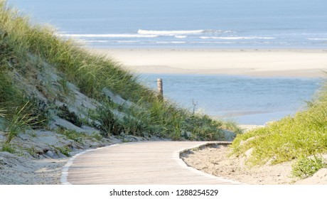 Path between the dunes to the beach of the northsea island langeoog in sunshine