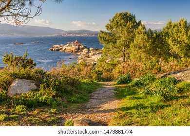 Path between pine forest towards Punta Cabalo lighthouse in Arousa Island, Galicia, Spain