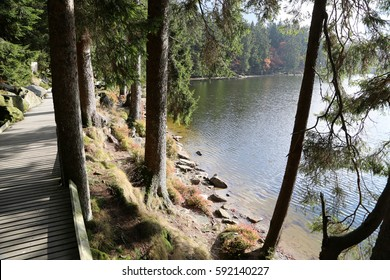 path by the lake Mummelsee in the black forest