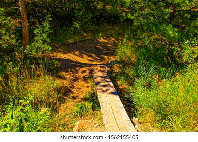 path climbs over a stream in the trees with wooden planks to the woods in Chautauqua Park in Boulder Colorado