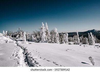 Path in deep snow on clear Sunny day. Winter trip through mountain valley
