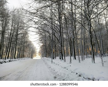 A path in the forest during winter. Beautiful snowy landscape in Larvik, Norway.