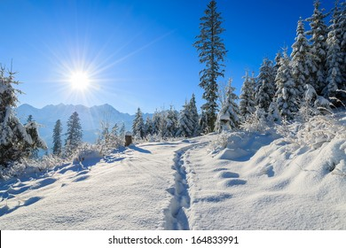 Path in fresh snow to Rusinowa Polana in winter landscape of Tatry Mountains on sunny day, Poland