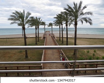Path going to sea with palm trees on the sides, viewed from sitting position on a platform whose railings are in the fore plan. Benicassim, Spain