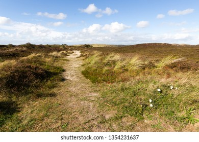 path of grass and sand through dunes