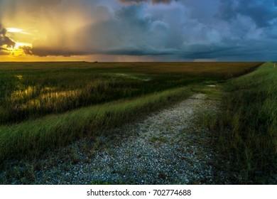 Path into the Everglades