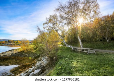 The path Ladestien located along Trondheim fjord in the Norwegian city Trondheim during indian summer