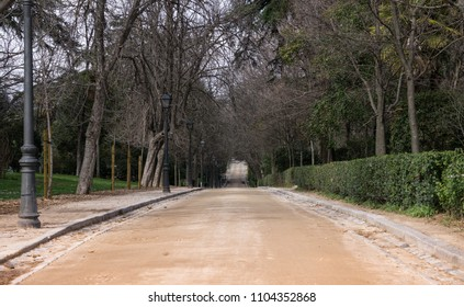 Path of land with trees around in the Parque del Retiro in Madrid.