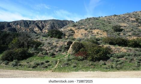 Path leading up a hillside, California