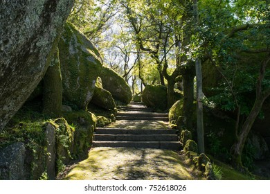 Path leading through the park on Mount Penha outside Guimaraes, Portugal