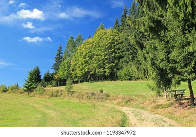 path leading through the summer landscape with green trees and meadow on sunny day, Beskydy mountains, Czech Republic