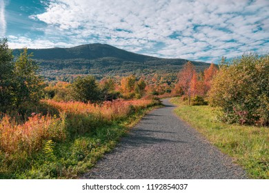 a path leading towards Mount Greylock in early fall