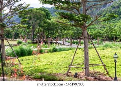 A path made of wood traverses the grasslands and green trees with mountains and sky.