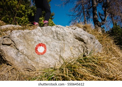 A path marking on a rock on the way to the mountain