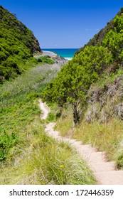 Path in national park, Australia