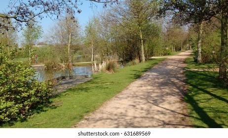 Path next to a pond