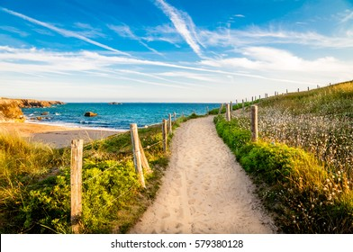 Path to the ocean, Quiberon's landscape, Bretagne, France