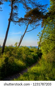 Path on the Baltic Sea cliff overlooking the Baltic Sea. Mecklenburg-Vorpommern