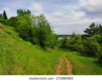 path on a green hillside with trees against a blue cloudy sky before the rain