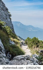 Path on Kampenwand in Bavaria Alps in Summer