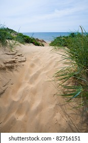 Path on sand dune down to the beach and ocean
