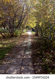 The path in the Park, covered with fallen autumn leaves. Landscape.