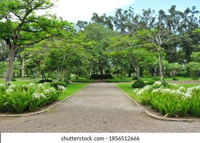 Path in a Peaceful Landscape Garden Park