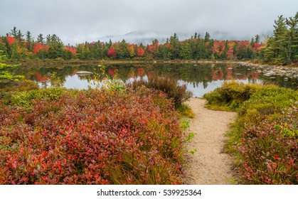 Path to Pearl Lake in the White Mountains of New Hampshire.