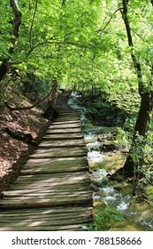 path in Plitvice Lakes Park, Croatia