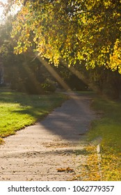 Path running through the autumn park